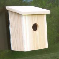 Songbird Essentials Nest View Bird House