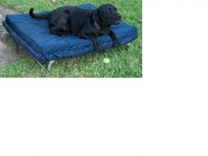 Dog Beds by Blantex