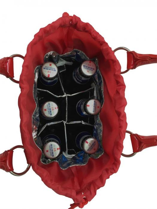 Picnic Gift - Bitchin Beer Bag - Red Candy insulated 6 bottle beverage tote