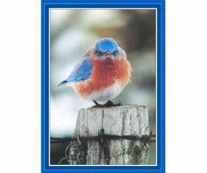 Puzzles by Songbird Essentials