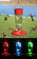Songbird Essentials Solar Powered Color Changing Hummingbird Bird Feeder