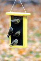 Bird's Choice 1.5 Qt. Yellow Recycled Magnet Mesh Finch Bird Feeder