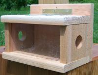 Songbird Cedar Post Mount Bluebird Feeder