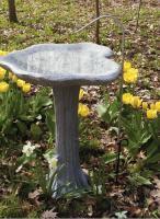 Bird's Choice Stainless Steel Pedestal Dripper