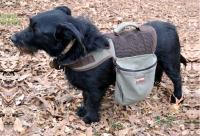 Eco Dog Backpack - Small Up to 20 lb. Dog