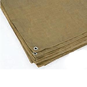 Texsport Brown Reinforced Rip-Stop Polyethylene Tarp, 8' x 10'