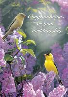Tree Free Greetings Garden Gold Wedding