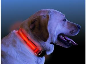 Dog Collars & Leashes by Nite-ize