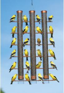 Tube / Finch Feeders by Songbird Essentials
