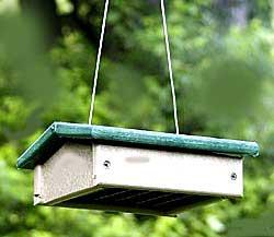 Suet Feeders by Songbird Essentials