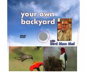 Books & Guides by Songbird Essentials