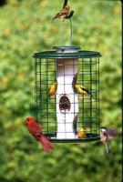 Vari-Craft Avian Wild Bird Mixed Seed Cage Bird Feeder