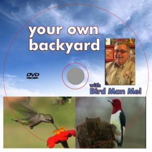 DVD's & CD's by Songbird Essentials