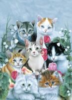 Tree Free Greetings Cuddly Kittens Blank