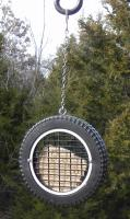 Songbird Essentials Wilbur's Woodpecker Wheel