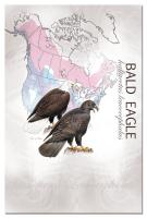 Tree Free Greetings Bald Eagle Eco Notes