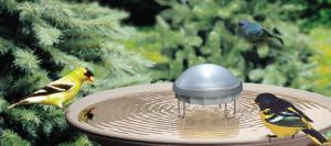Bird Bath Accessories by Allied Precision