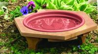 Songbird Essentials Mini 14 inch Garden Bird Bath With a Plastic Clay Tray