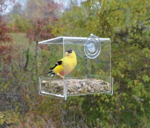 Window Feeders by Songbird Essentials