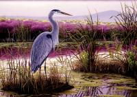 Tree Free Greetings Great Blue Heron Blank