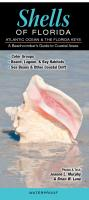 Quick Reference Publishing Shells of Florida: Atlantic Ocean