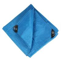 Pacific Play Tents Messy Mat 8x10, Blue