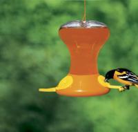 Songbird Essentials Fliteline Junior 30 Ounce Oriole Bird Feeder
