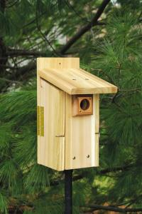 Bluebird Houses by Songbird Essentials
