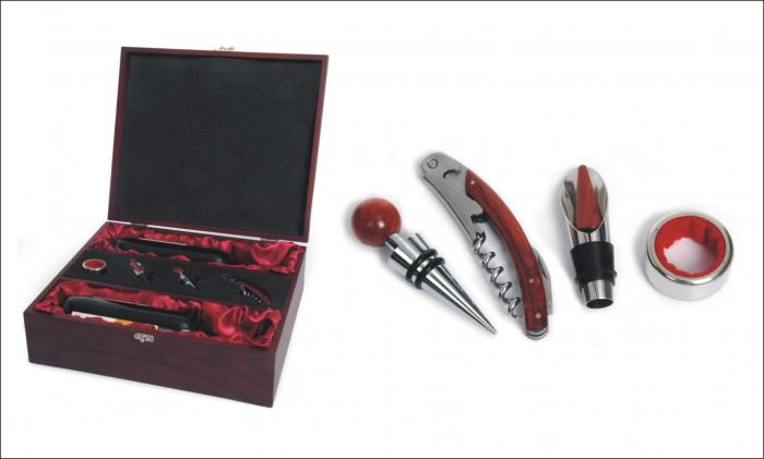 Picnic & Beyond  Elegant Double Wine Box Set