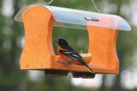 Birds Choice Recycled Oriole Bird Feeder with Hanging Cable