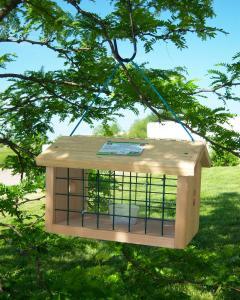 Bluebird Feeders by Songbird Essentials