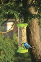 Toysmith Tube Bird Feeder w/Field Guide