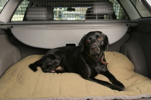 Dog Beds by ABO Gear
