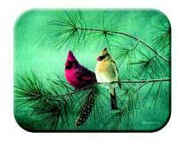 Tuftop Tempered Glass Kitchen Board, Artist Collection - Cardinals & White Pine Medium