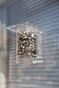 Window Feeders by Woodstream