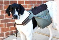 Eco Dog Backpack - XLarge Over 80 lb. Dog