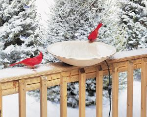 Heated Bird Baths by Allied Precision