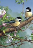 Tree Free Greetings Chickadee & Apple Blossoms Blank