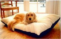Majestic Pet Rectangle Pet Bed - Extra Large/Burgundy