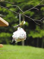 Birds Choice Cottontail Nest Building Ball
