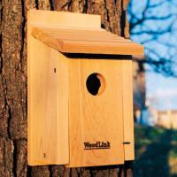 Woodlink Audubon Series Bluebird House